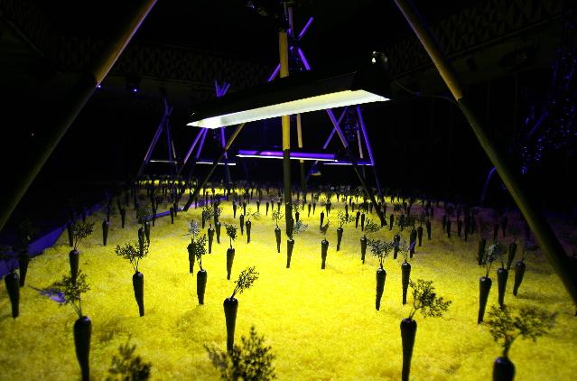 Henrik Vibskov 'The Land of Black Carrots' show Copenhagen